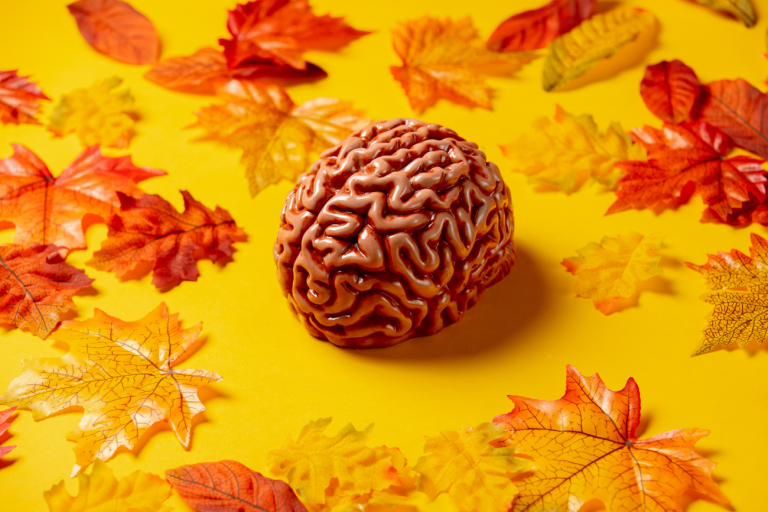 The Seasons Are Changing and So Is Your Brain